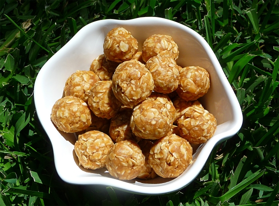 No Bake Peanut Butter Balls Dog Treat Recipe