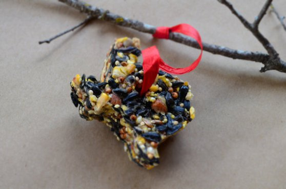 DIY Birdseed Ornaments by Home Style Austin