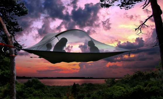 The Tentsile Stingray Tree Tent