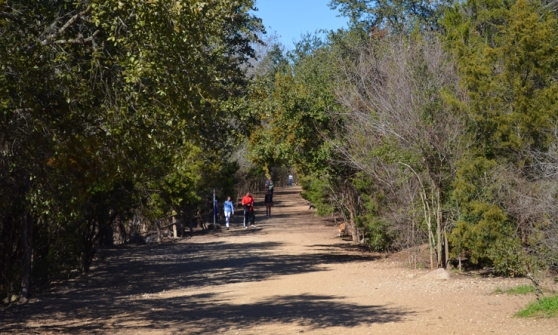 A Great Walking Path At Red Bud Isle Park In Austin, Texas