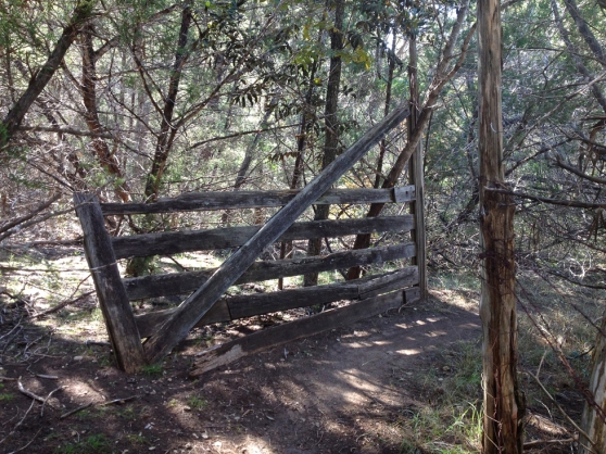 The Old Gate Of Canyon Creek
