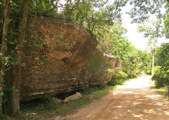 Brushy Creek Regional Trail - Another Rock Formation