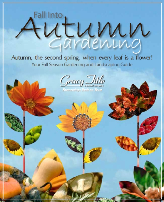 Austin Fall Gardening Guide