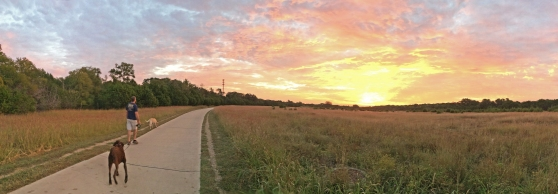 Brushy Creek Regional Trail