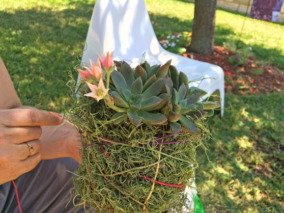 How to Make a Succulent Planter Hanger by Home Style Austin