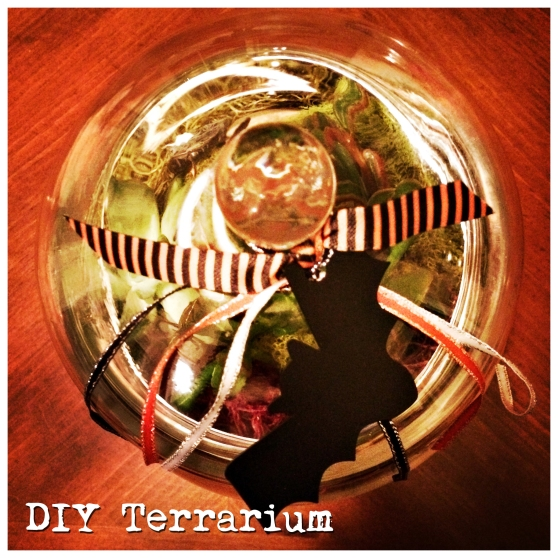 How to make your very own terrarium
