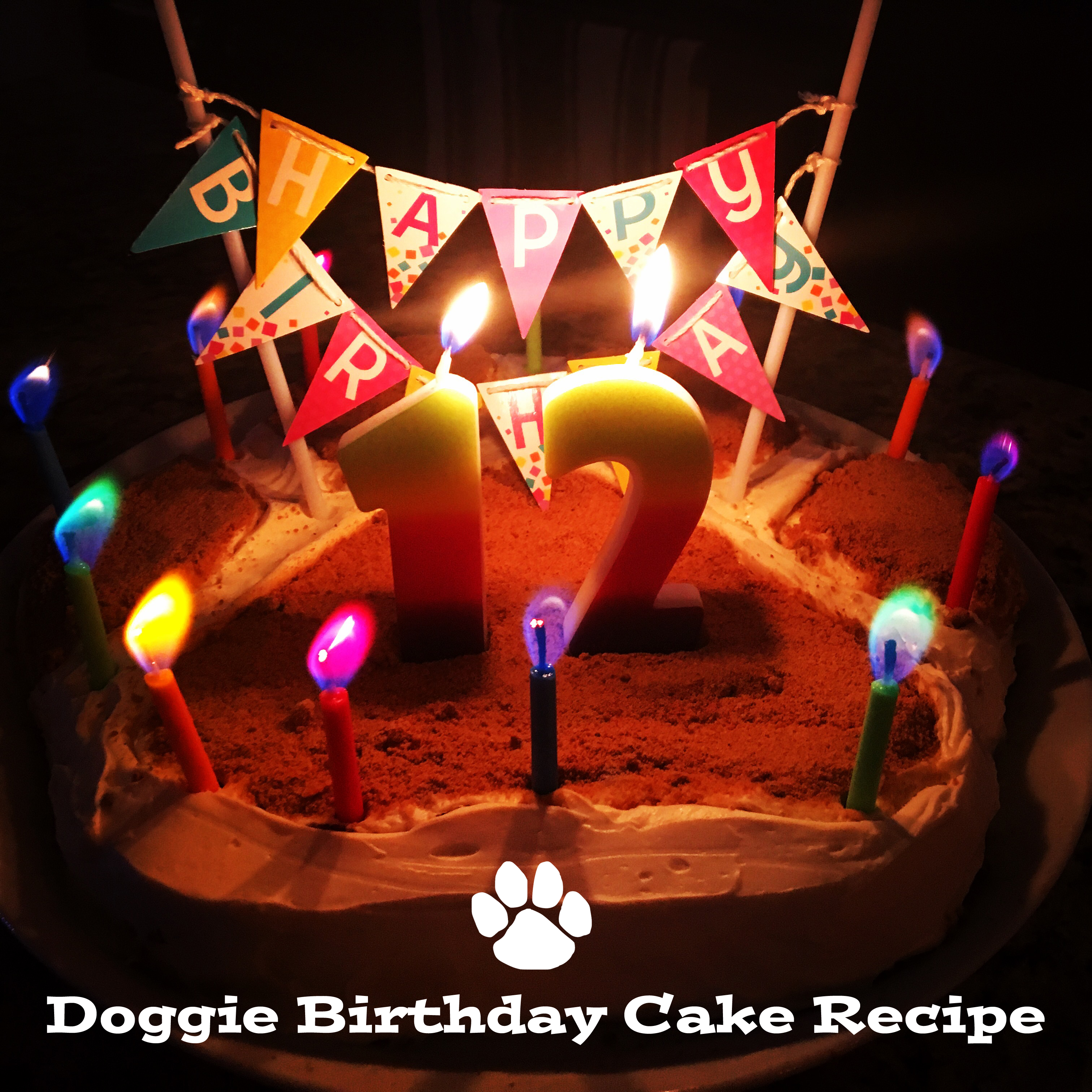 Recipe Birthday Cake For Dogs Home Style Austin